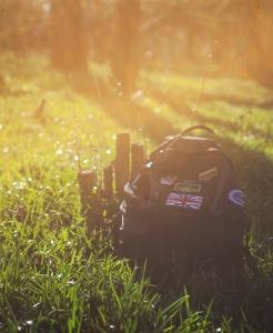 backpack-trail-hiking